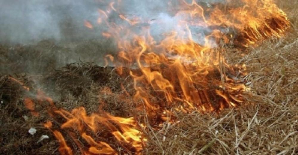 Высокая пожароопасность — МЧС России по Алтайскому краю